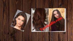 Kestane Saç Rengi Kataloğu
